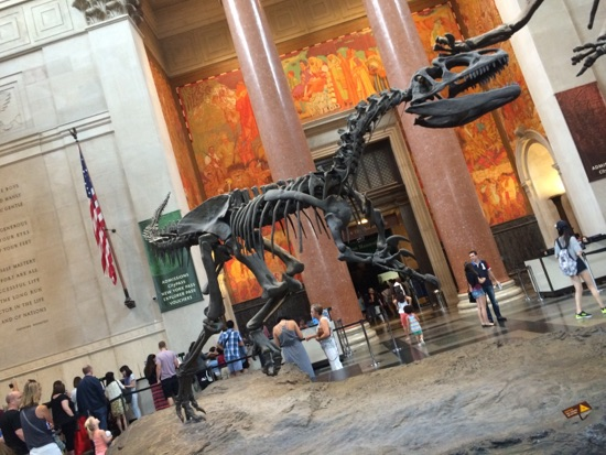 Natural History Museum Nyc Ticket Price