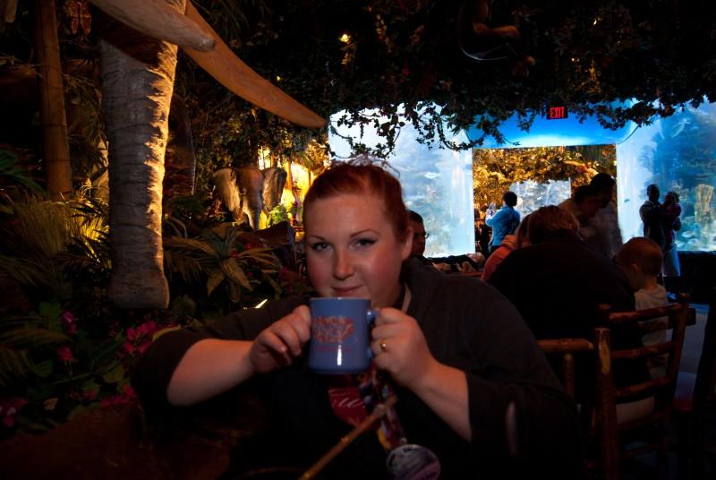 Rainforest Cafe Disneyland Paris Meal Plan